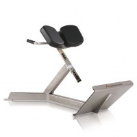 FreeMotion EPIC 45 Degree Back Extension