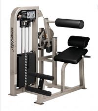 Life Fitness Pro Back Extension -CS