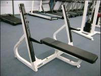 Cybex Olympic Flat Bench -CS