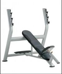 Cybex Olympic Incline Bench -CS