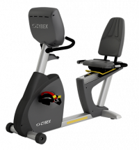 Cybex 625R Recumbent Exercise Bike -CS