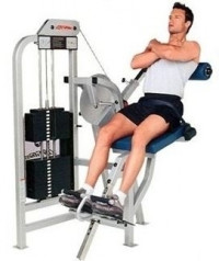 Life Fitness Pro Low Back Extension - CS