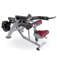 Life Fitness Signature Series Seated Dip-CS