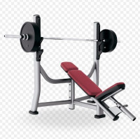 Life Fitness Signature Olympic Incline Bench-CS