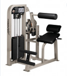 Picture of Life Fitness Pro Back Extension -CS