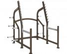 Picture of Cybex Squat Rack- CS